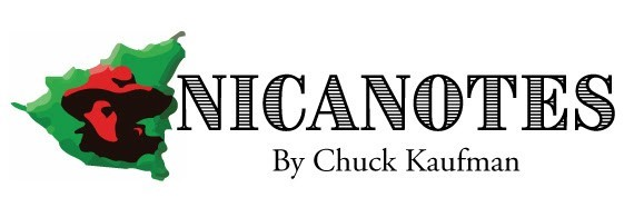 nicanotes2.jpg